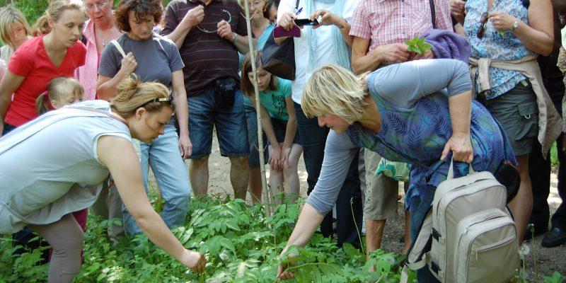 Foto: Kräuterführung mit Anna Habicht. Fotoautorin: Susanne Hoffmeister